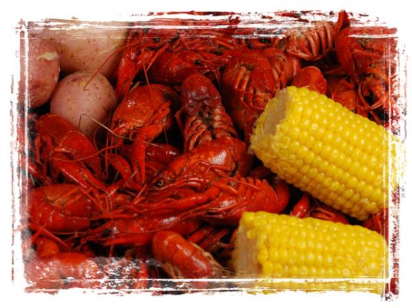 Live Louisiana Seafood Sales | Tony's Seafood & Deli in Baton Rouge